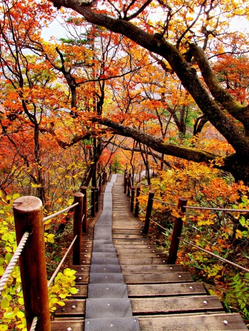 09-jirisan-national-park-south-korea