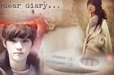 Dear Diary Teaser Cover