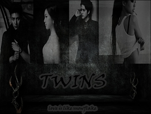 new cover twins